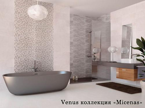 VENUS Micenas