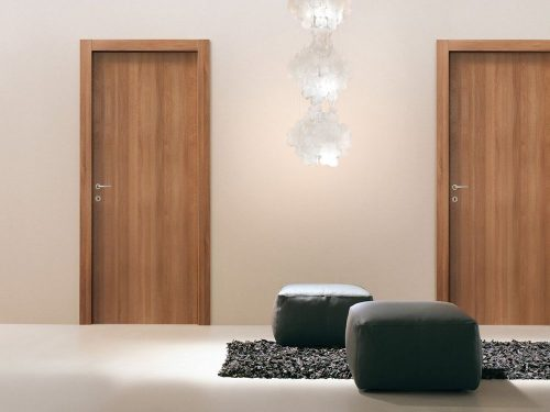 двери в интерьере квартиры